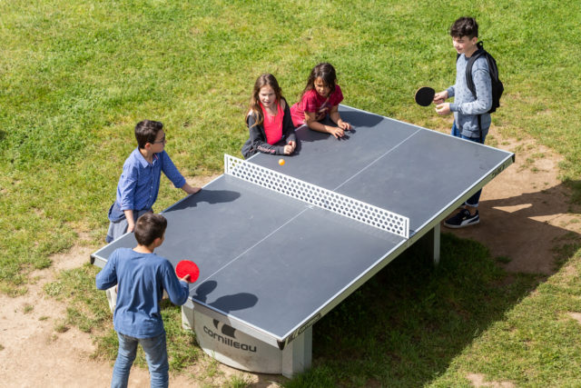 The table tennis
